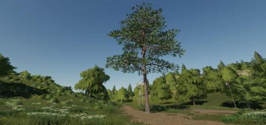 Photo of FS19 – Pine Can Be Placed V1