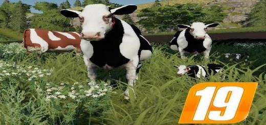 Photo of FS19 – Placable Cow Family For The Yard With Sound V1