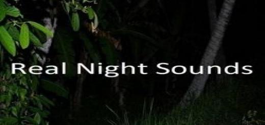 Photo of FS19 – Real Night Sounds V1