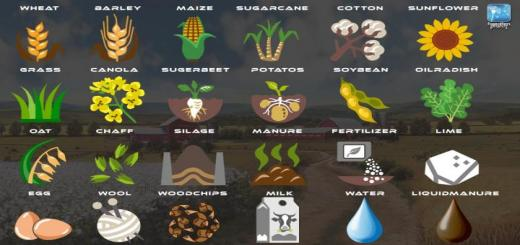 Photo of FS19 – Forgotten Plants – Icons V1