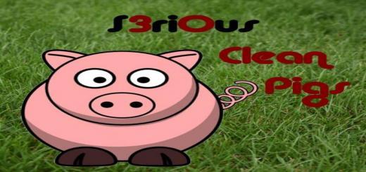 Photo of FS19 – Schweinestalle Cleanmax V1