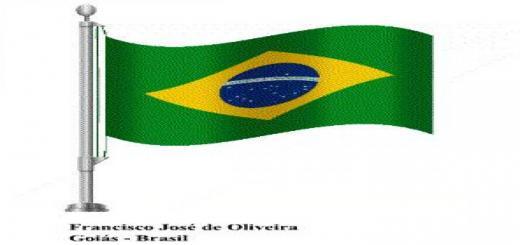 Photo of FS19 – Bandeira Brasileira (Brazilian Flag) V2