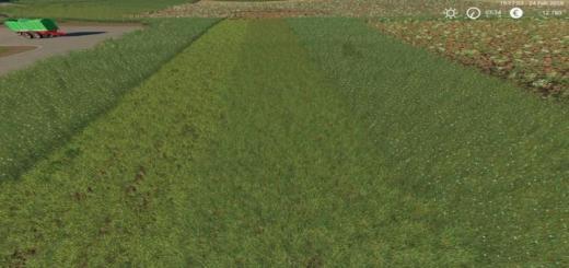 Photo of FS19 – Grass Texture V1