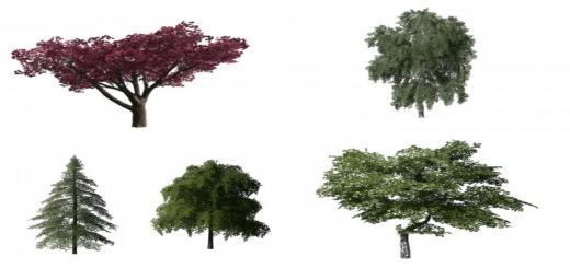 Photo of FS19 – More Trees V1