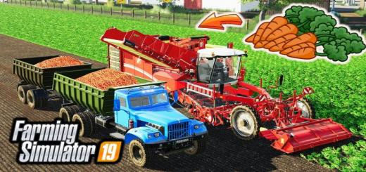 Photo of FS19 – How To Grow And Harvest Carrots V1