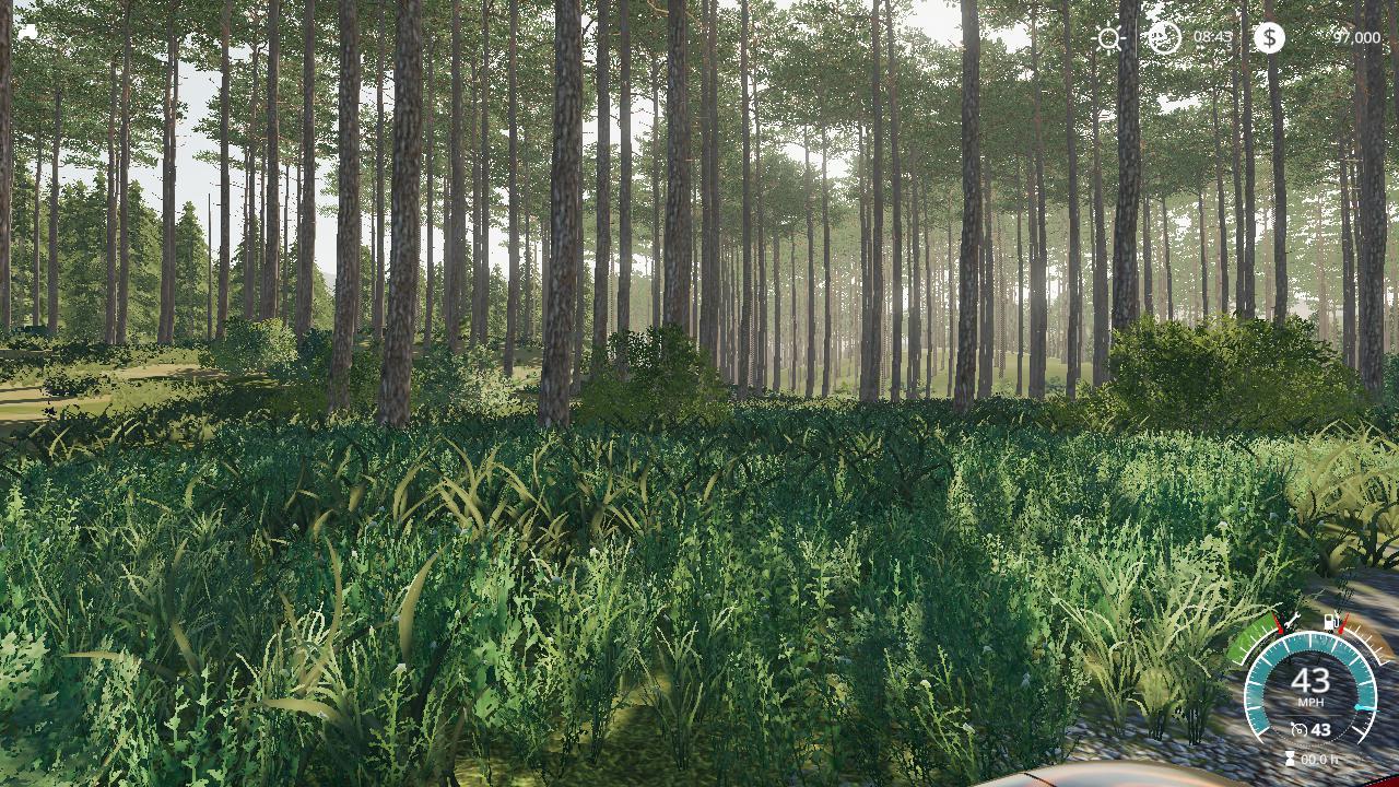 Photo of FS19 – Timber Life V1