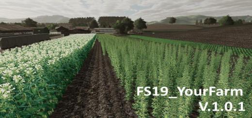 Photo of FS19 – Yourfarm Map V1.0.1