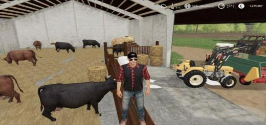 Photo of FS19 – Cow Husbandry V1