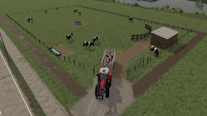 FS19 - Dairy Cow Pasture V1
