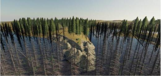 Photo of FS19 – Daylight In The Swamp V1