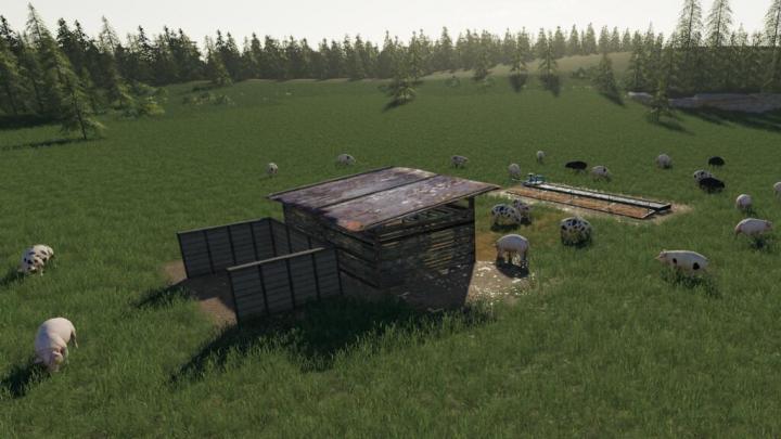 FS19 - Open Pig Pasture V1.0.0.1