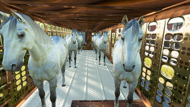 FS19 - Silverstar Horse Trailer V1