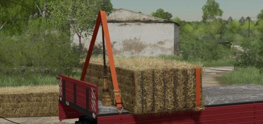 Photo of FS19 – Broom V1
