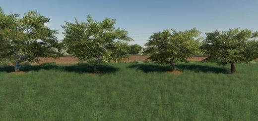 Photo of FS19 – Placeable Fruit Trees Pack V1