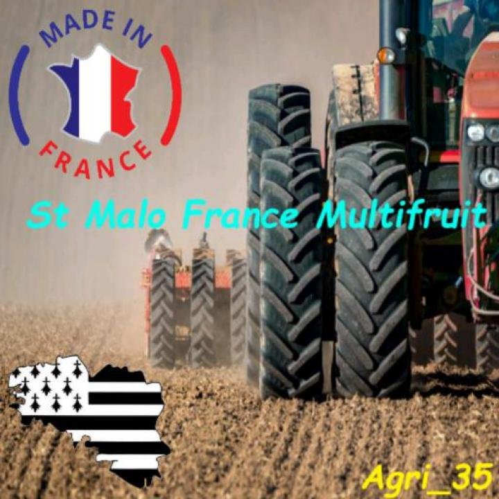 FS19 - St Malo France Multifruits V1