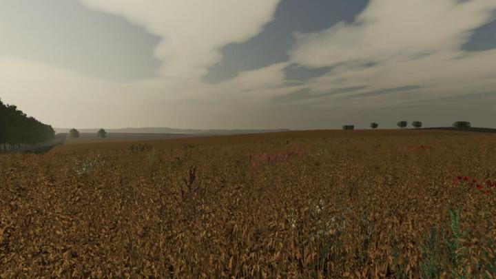 FS19 - Wyther Farms Map V1.2