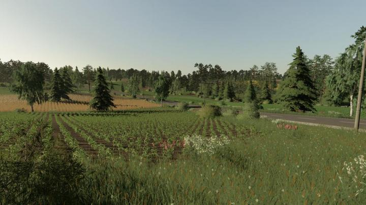 FS19 - Jasminowo Map V1.0.0.1