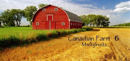 Photo of FS19 – Canadian Farm Map – Seasons Ready V6.0