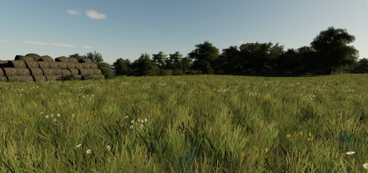 Photo of FS19 – Erlengrat Grass V1.0