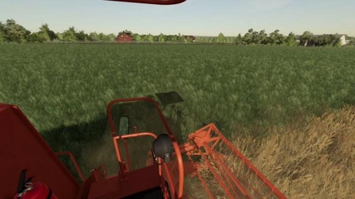 FS19 - Grass Texture