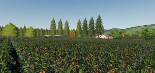 Photo of FS19 – Santo Anjo Farm Map V3.0